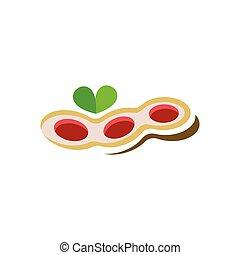 peanuts logo icon vector illustration symbol