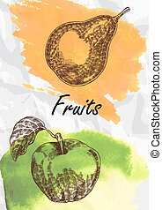 Pear and apple fruits vector illustration.