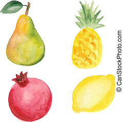Pear, pinapple, pomegranate and lemon. Hand drawn in watercolor technique