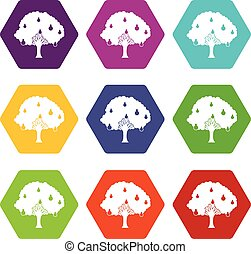 Pear tree with pears icon set color hexahedron - Pear tree...