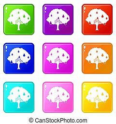 Pear tree with pears set 9 - Pear tree with pears icons of 9...