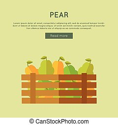 Pear Vector Web Banner in Flat Style Design.