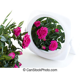 bouquet of roses and a mirror