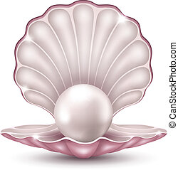 Vector illustration of a beautiful pearl in a shell on a white background
