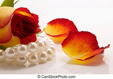 pearls and petals - white pearl necklace and rose over white...