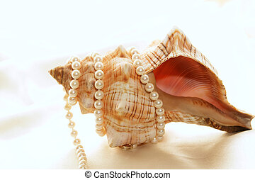 pearls wrapped around shell - Beautiful brown and white...
