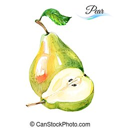 Pears - Watercolor fruit pears isolated on white background