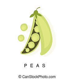 Peas Pod, Infographic Illustration With Realistic Pod-Bearing Legumes Plant And Its Name
