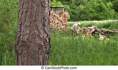 peasant chop firewood