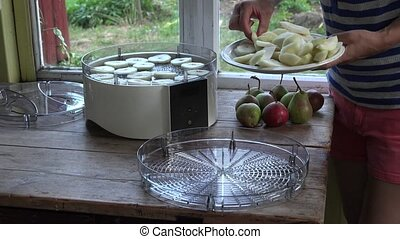 peasant girl hands put pieces of cut pears in fruit dryer...