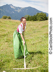 Peasant woman in dirndl when working with a rake.