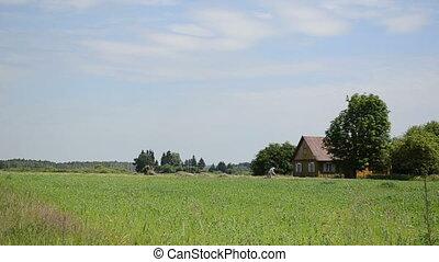 peasants house rake hay