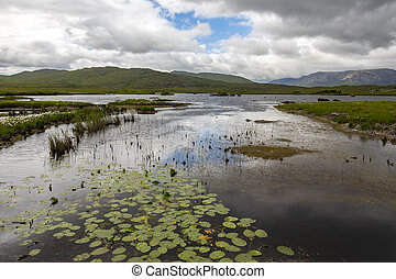 Peat bog - County Mayo - Republic of Ireland - Peat bog in ...