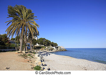 Pebble Beach and palms Spain