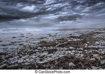 Pebble Beach Coast Before Coming Storm