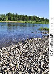 Pebble river bed. River Polar Urals on a Sunny summer day.