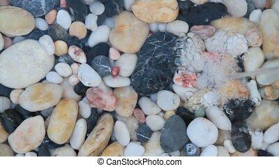 Pebble stones - Fountain plash on pebble stones with...