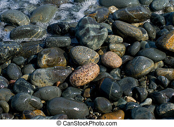 A close-up of the multicolour wet pebbles on seabeach.
