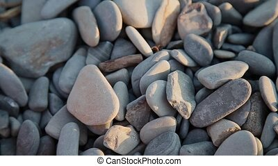 Pebbles on the beach close up.