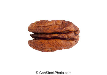 Pecan - Brown pecan isolated on a white background.