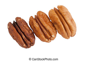 Brown pecans isolated on a white background.