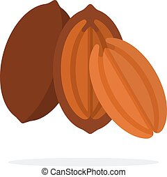 Pecan in the shell, half pecan and the kernel of the pecan ...