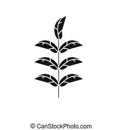 Pecan leaf black vector concept icon. Pecan leaf flat...