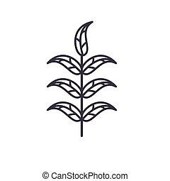 Pecan leaf line icon concept. Pecan leaf flat vector sign,...
