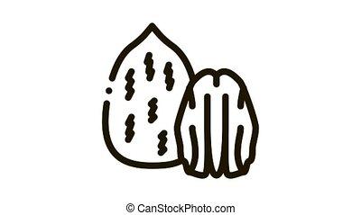 pecan nut Icon Animation. black pecan nut animated icon on white background