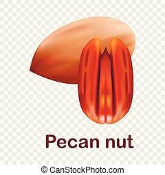 Pecan nut icon, realistic style - Pecan nut icon. Realistic...