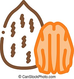 pecan nut icon vector outline illustration - pecan nut icon ...