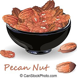 Pecan nut on plate isolated on white background. Vector ...