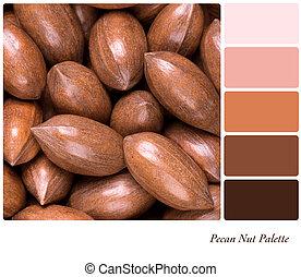 Pecan nut palette