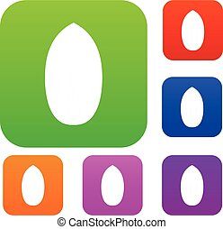 Pecan nut set color collection - Pecan nut set icon color in...