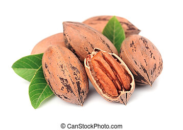 Pecan nuts with leaves close up on white background