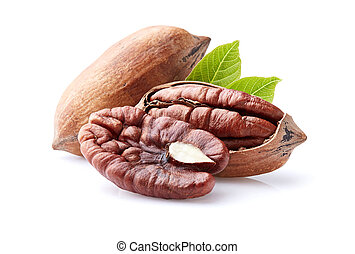 Pecan nuts with leaves on white background
