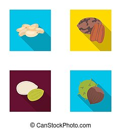 Pecan, pine nut, pumpkin seeds, chestnut. Different kinds of nuts set collection icons in flat style raster, bitmap symbol stock illustration web.