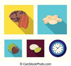Pecan, pine nut, pumpkin seeds, chestnut.Different kinds of...