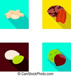 Pecan, pine nut, pumpkin seeds, chestnut.Different kinds of nuts set collection icons in flat style vector symbol stock illustration web.
