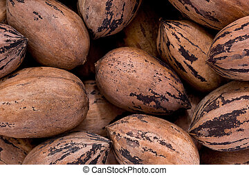 Pecans (Carya illinoinensis) - Background texture of a pile ...