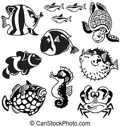 peces, conjunto, caricatura