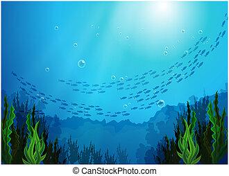 peces, escuela, mar, debajo
