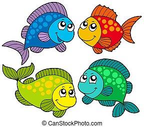 peces, lindo, caricatura, colección