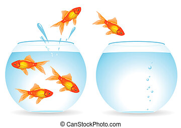 peces, migración
