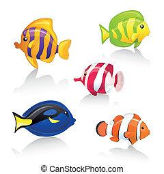 peces, ornamental, vector