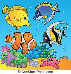 peces, submarino, 2, animales