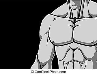 pecho, muscular