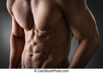 pectoral, músculo,  abdominal