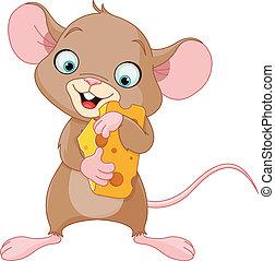 pedaço, rato, segurando, queijo