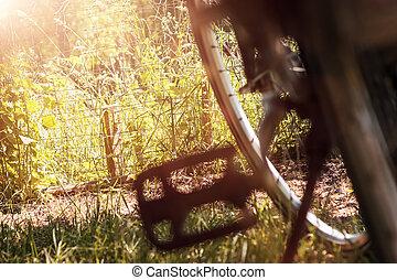 pedal, de, bicicleta, em, agradável, paisagem natureza